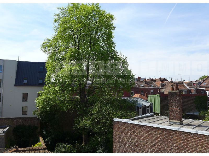vente-appartement-lille-16064-2-chambres